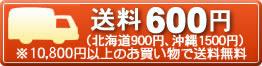 送料500円